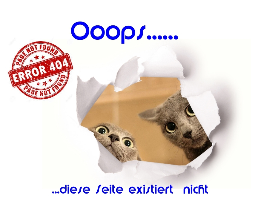 Bild 404 page not found